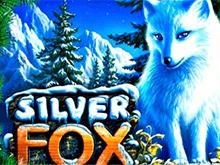 Silver Fox в казино Вулкан
