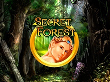 Играть бесплатно в Secret Forest